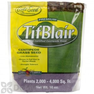 Bag of TifBlair Centipede Grass Seed