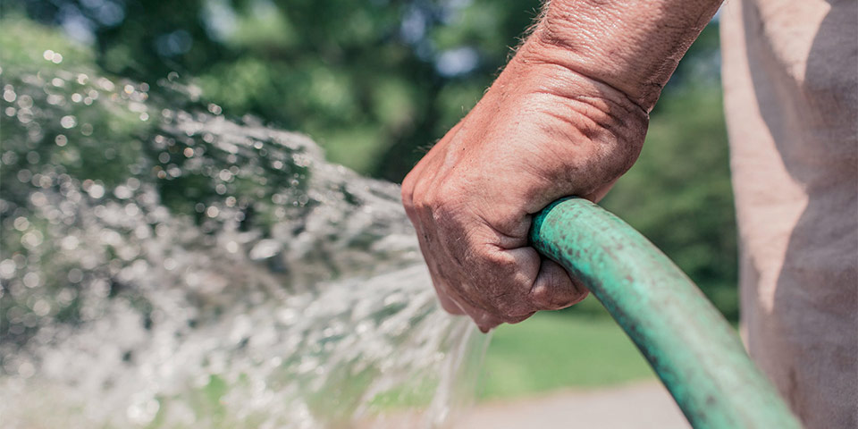 watering yard with garden hose