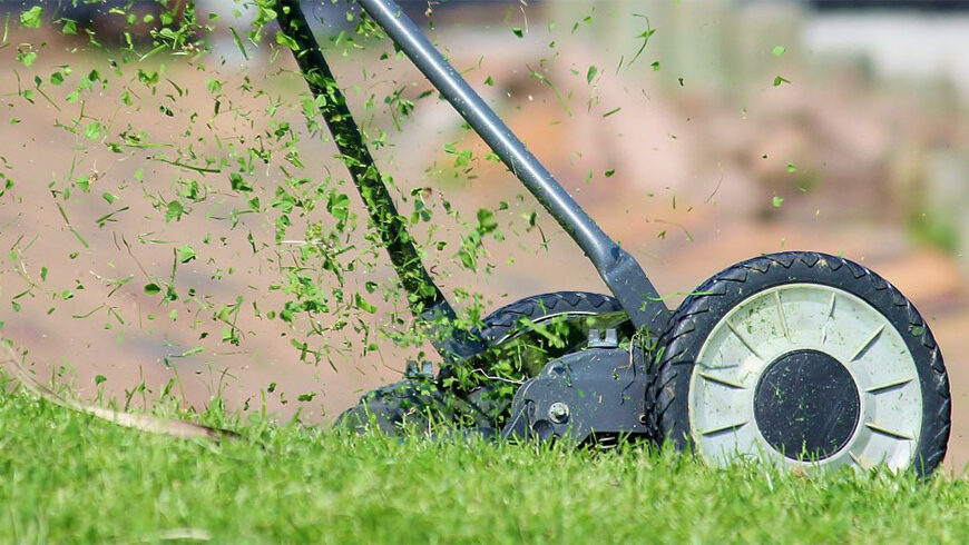 grass clippings flying up from rotary lawn mower